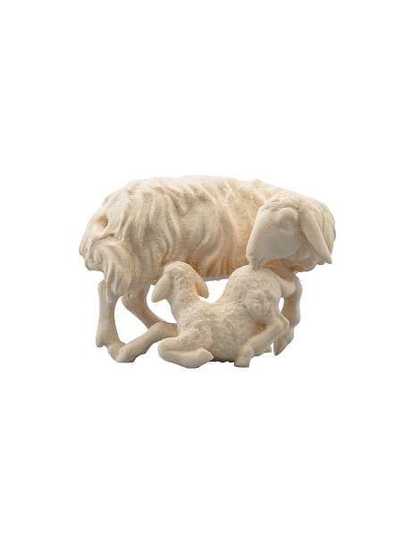 Schafgruppe