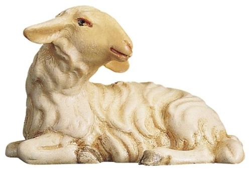 Schaf liegend