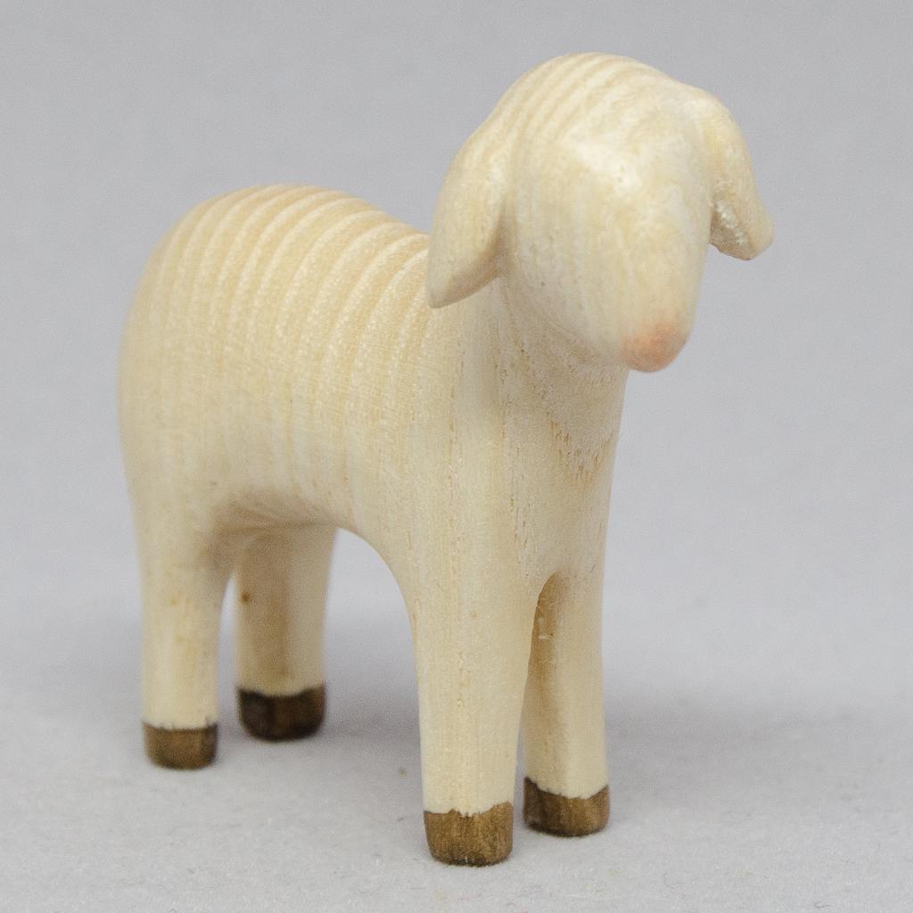 Schaf stehend