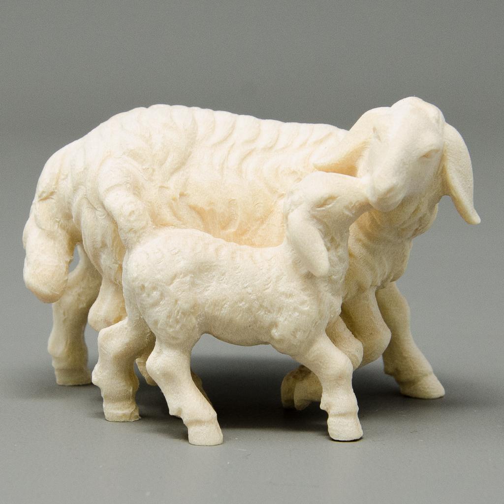 Schaf stehend mit Lamm