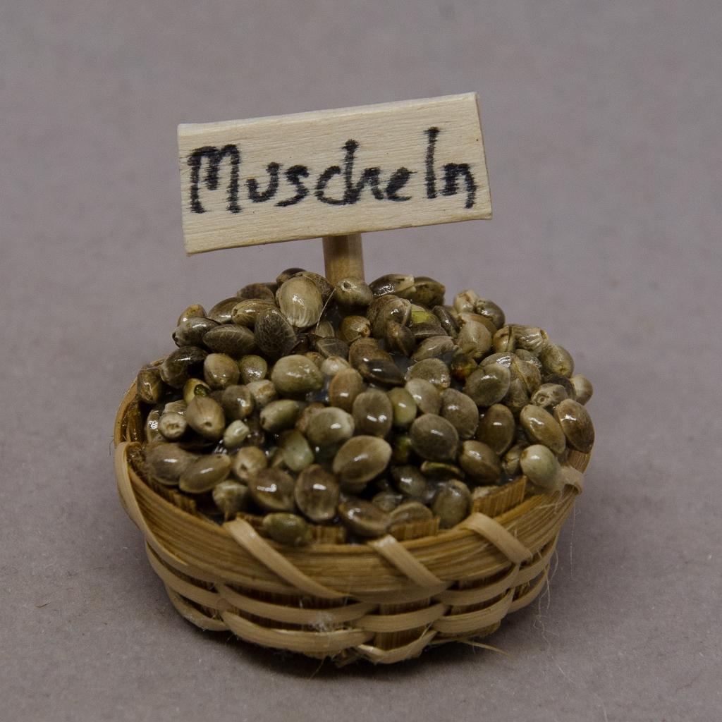 Korb mit Muscheln