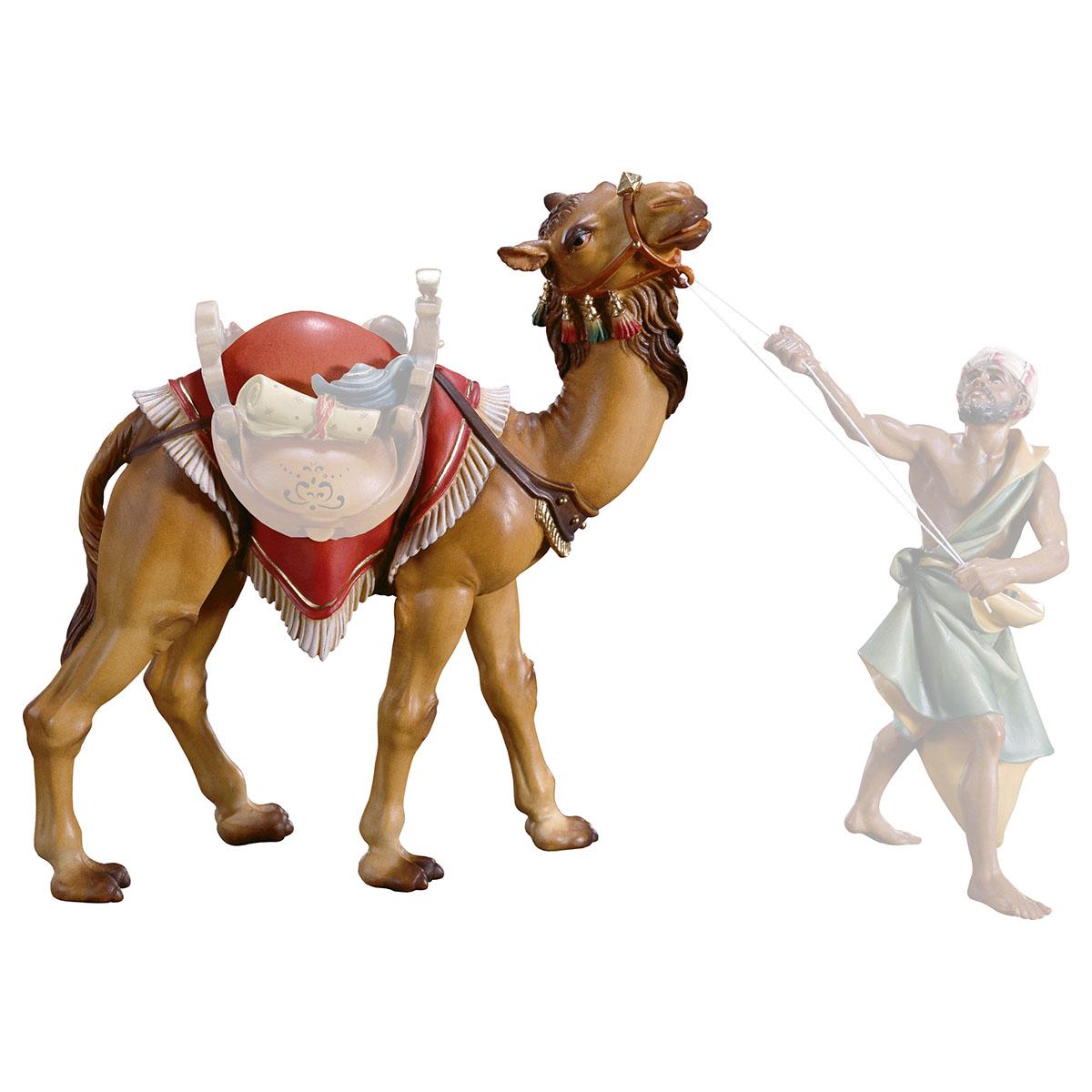 Kamel stehend (ohne Sattel und Treiber)